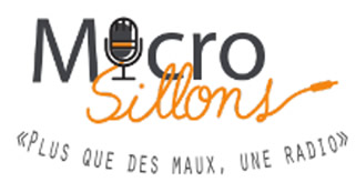 micro sillons